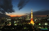 Title:Tokyo Tower Japan cities landscape photography wallpaper 08 Views:11345