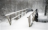 Title:bridge covered in snow-winter natural landscape wallpaper Views:3967