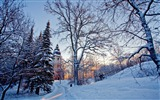Title:church tower-winter natural landscape wallpaper Views:6502