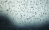 Title:drops-Water close up photography wallpapers Views:4533