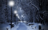 Title:snowy park at night-winter natural landscape wallpaper Views:7032