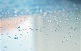 Title:water drops-Water close up photography wallpaper 01 Views:8101