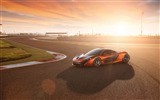 Title:2014 McLaren P1 Auto HD Desktop Wallpaper 03 Views:2656