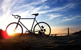 Title:Bicycle theme photography widescreen wallpaper Views:18301