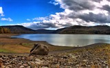 Title:Lake hdr-Natural landscape widescreen Wallpaper Views:3523