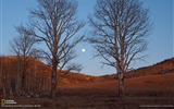 Title:Moonrise Colorado-National Geographic wallpaper Views:3097