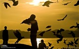 Title:Port Blair Andaman Islands-National Geographic wallpaper Views:4110