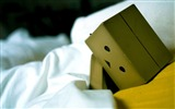 Title:bed sadness-Danboard boxes robot photo HD Wallpaper Views:10634