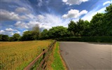 Title:countryside road-Natural landscape widescreen Wallpaper Views:4683