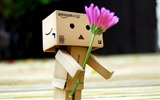 Title:flower romance gift-Danboard boxes robot photo HD Wallpaper Views:5363