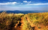 Title:hiking path-Natural landscape widescreen Wallpaper Views:3011