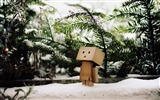Title:mood snow mud waiting-Danboard boxes robot photo HD Wallpaper Views:5520