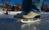 Title:skates ice winter jeans snow-Sports theme wallpapers Views:3213