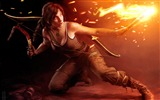 Title:2013 popular games HD desktop wallpaper selection Views:10244