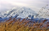 Title:Beautiful Alaska natural scenery desktop wallpaper 06 Views:3191