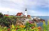Title:beacon coast rocks flowers herbs-Beautiful natural scenery wallpaper Views:8837