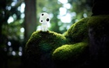Title:kodama-May HD quality wallpaper Views:5852