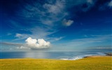 Title:ocean meadow glade land blue green-Beautiful natural scenery wallpaper Views:4058