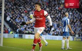 Title:Brighton 2-3 Arsenal-2013 Arsenal HD Wallpaper Views:2566