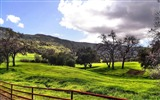 Title:Field fence country road-Nature Landscape wallpaper Views:5675