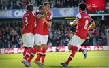 Title:QPR 0-1 Arsenal-2013 Arsenal HD Wallpaper Views:2884