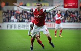 Title:Swansea City 0-2 Arsenal-2013 Arsenal HD Wallpaper Views:2880