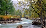 Title:river mountain trees stream-Summer Photography Wallpaper Views:3240