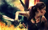 Title:2013 featured popular games HD desktop wallpaper Views:9967