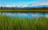 Title:Denali National Park Beautiful Landscape HD Wallpaper 09 Views:2054