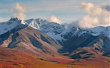 Title:Denali National Park Beautiful Landscape HD Wallpaper 13 Views:2247