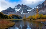Title:Mount Assiniboine Park Landscape HD wallpaper Views:6032