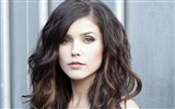 Title:Sophia Bush beauty photo HD wallpaper 09 Views:2193