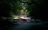 Title:river stream current light uncertainty wood-landscape HD wallpaper Views:3093