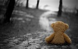 Title:teddy bear in the wood-High quality wallpapers Views:4588