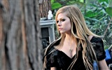 Title:Avril Lavigne-beautiful girl photo HD wallpaper Views:3786