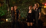Title:The Mortal Instruments City of Bones Movie HD Wallpaper 08 Views:2159