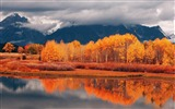 Title:Beautiful golden autumn landscape wallpaper 02 Views:2791