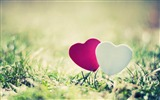 Title:heart grass couple close-up-Romantic HD Wallpaper Views:8482