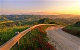 Title:italy road protection descent-Nature HD Wallpaper Views:3267