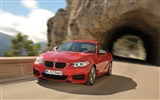 Title:2014 BMW M235i Coupe Car HD Wallpaper Views:6399