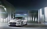 Title:2015 Jaguar F-Type R Coupe Car HD Wallpaper 04 Views:3081