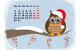 Title:Funny Owl Waiting For Holidays-December 2013 Calendar Wallpaper Views:3005