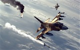 Title:Military aviation fighter Widescreen Wallpaper 07 Views:2765