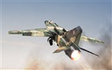 Title:Military aviation fighter Widescreen Wallpaper 09 Views:2981