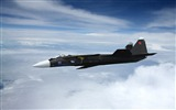 Title:Military aviation fighter Widescreen Wallpaper 10 Views:2823