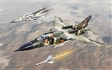 Title:Military aviation fighter Widescreen Wallpaper 13 Views:2721