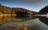 Title:forest lake reflection-Landscape HD Wallpaper Views:2911