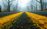 Title:road close-up mist-Nature HD Wallpapers Views:3791