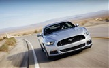 Title:2015 Ford Mustang GT Car HD Wallpaper 01 Views:3174