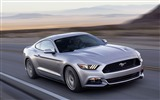 Title:2015 Ford Mustang GT Car HD Wallpaper 02 Views:2554